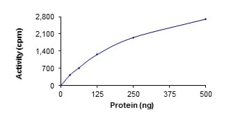 Functional Studies - Recombinant human STK36 protein (ab139615)