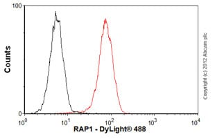 Flow Cytometry - Anti-RAP1 antibody [4c8/1] (ab14404)