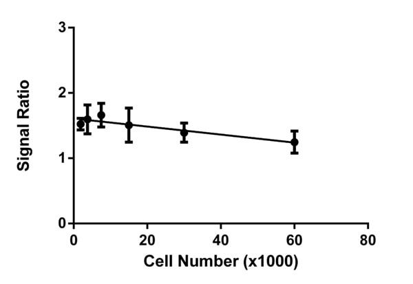 Quantitative measurement of the COX-I/SDH-A protein expression ratio