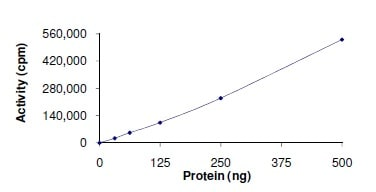 Functional Studies - Recombinant human ABL1 (mutated Y253 F) protein (ab140419)
