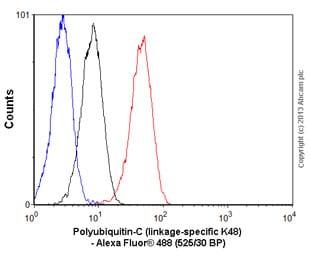 Flow Cytometry - Anti-Ubiquitin (linkage-specific K48) antibody [EP8589] (ab140601)