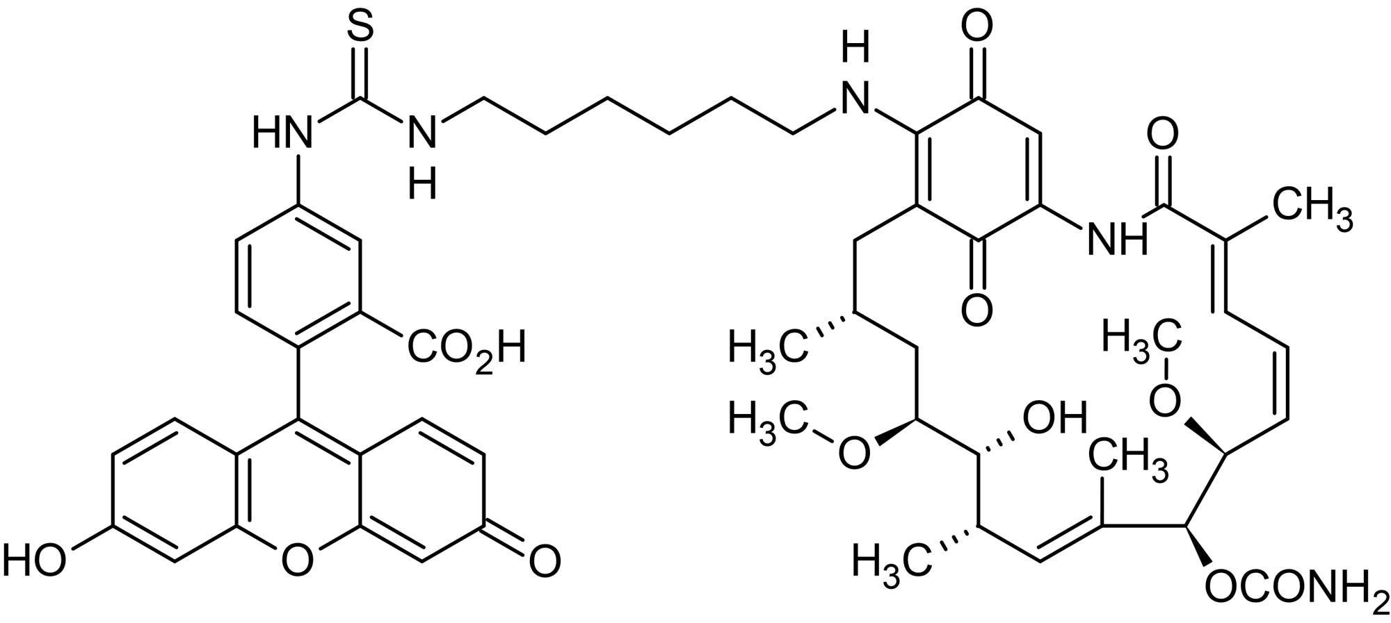 Chemical Structure - Geldanamycin-FITC, fluorescent labelled HSP90 inhibitor (ab141589)