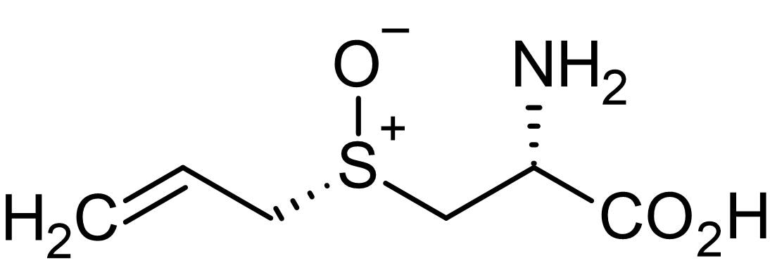Chemical Structure - L-(+)-Alliin, Cystein sulfoxide derived from garlic (ab141895)