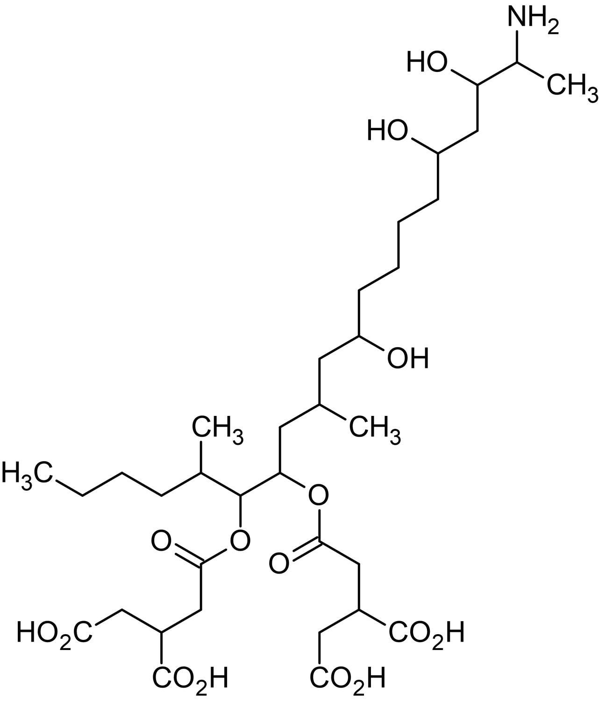 Chemical Structure - Fumonisin B1, Protein serine/threonine phosphatase inhibitor (ab142433)