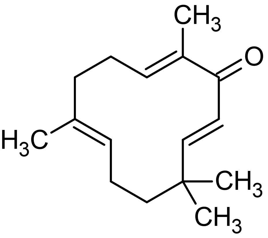 Chemical Structure - Zerumbone, NF-kappaB inhibitor (ab142474)