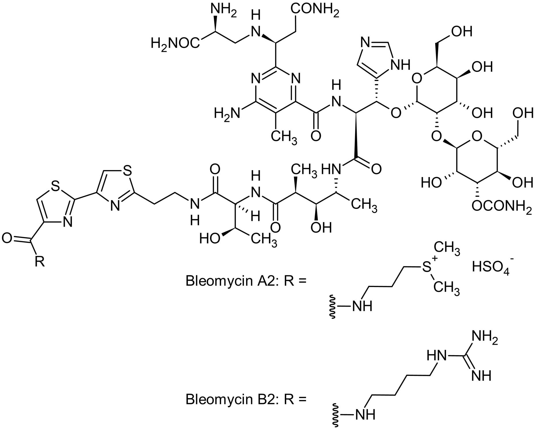 Chemical Structure - Bleomycin sulfate, anticancer and antibiotic agent (ab142977)