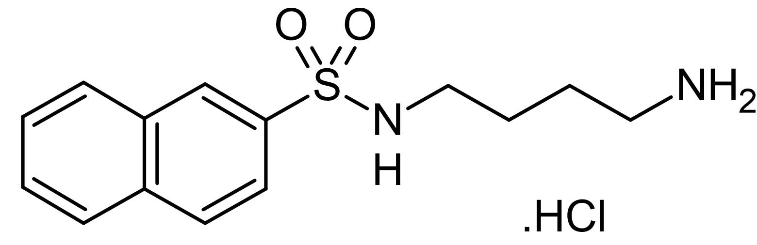 Chemical Structure - W-12, calmodulin kinase inhibitor (ab143758)