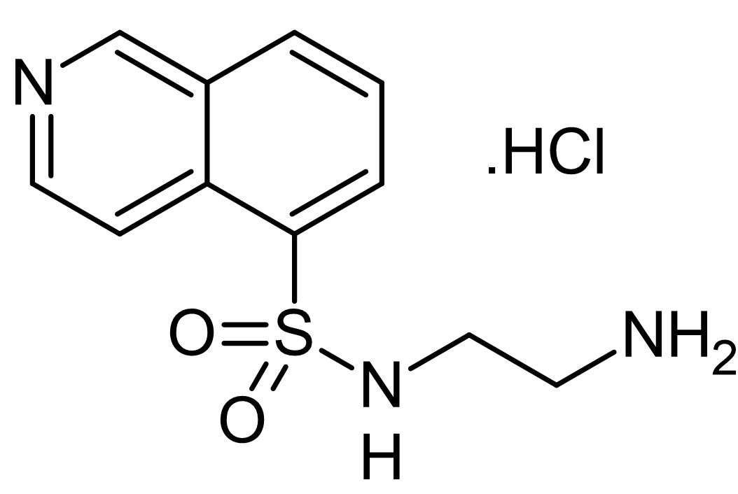 Chemical Structure - N-(2-Aminoethyl)-5-isoquinolinesulfonamide hydrochloride, protein kinase inhibitor (ab143763)