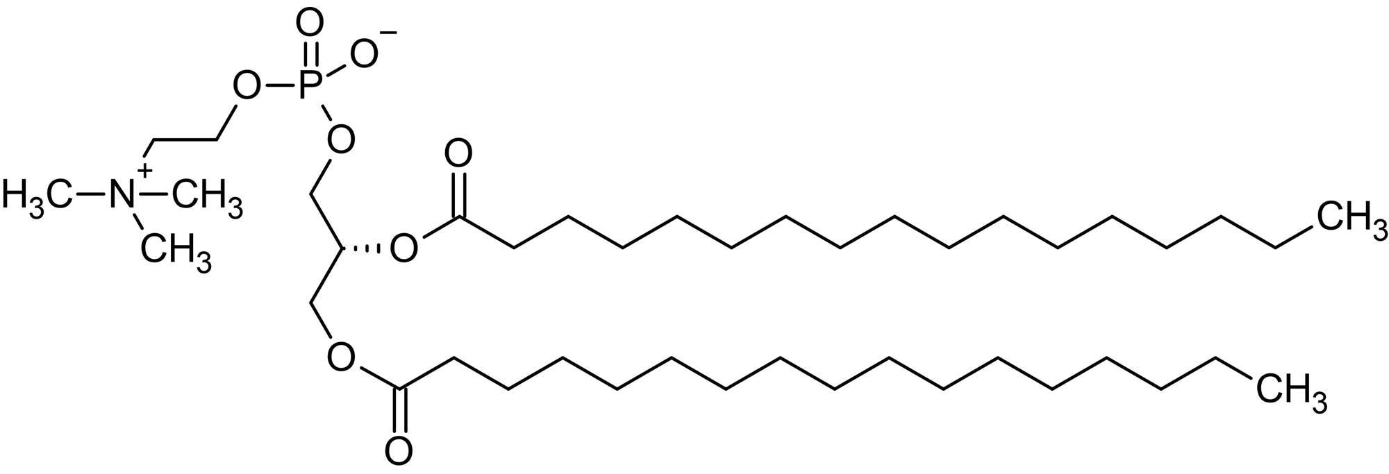 Chemical Structure - 1,2-Diheptadecanoyl-sn-glycero-3-phosphorylcholine (DHDPC), Phosphatidylcholine (ab143942)