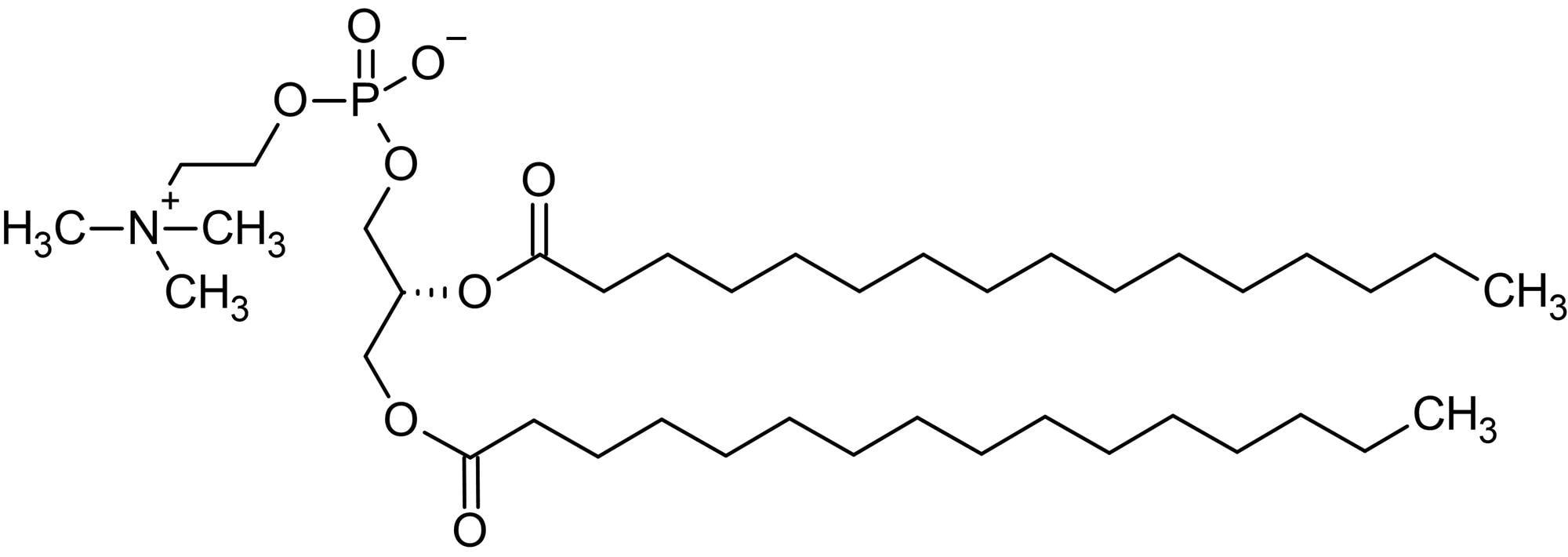 Chemical Structure - 1,2-Dipalmitoyl-sn-glycero-3-phosphorylcholine (DPPC), Phosphatidylcholine (ab143947)