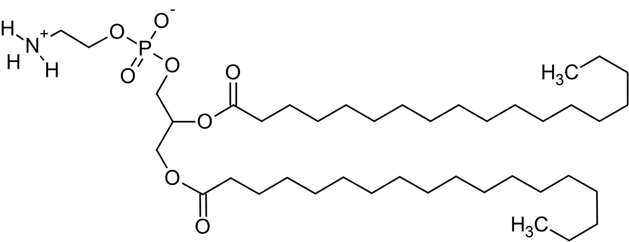 Chemical Structure - 1,2-Distearoyl-sn-glycero-3-phosphorylethanolamine (DSPE), Phosphorylethanolamine phospholipid (ab143957)