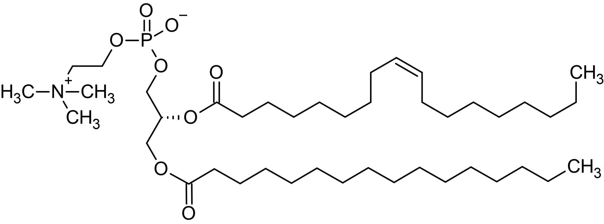 Chemical Structure - 1-Palmitoyl-2-oleoyl-sn-glycero-3-phosphorylcholine (POPC), Zwitterionic phospholipid (ab143958)