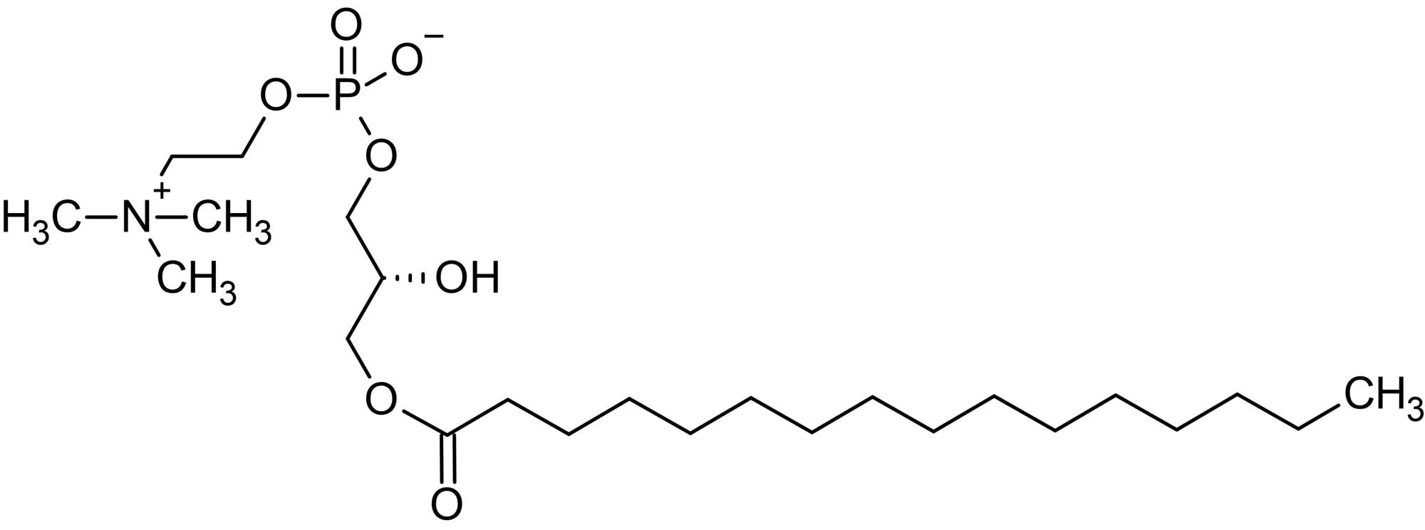 Chemical Structure - 1-Palmitoyl-<em>sn</em>-glycero-3-phosphorylcholine (ab143963)