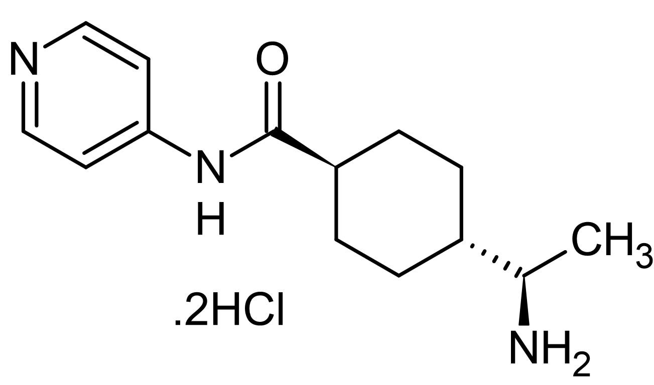 Chemical Structure - Y-27632 dihydrochloride (mM/ml), Rho kinase inhibitor (ab144494)