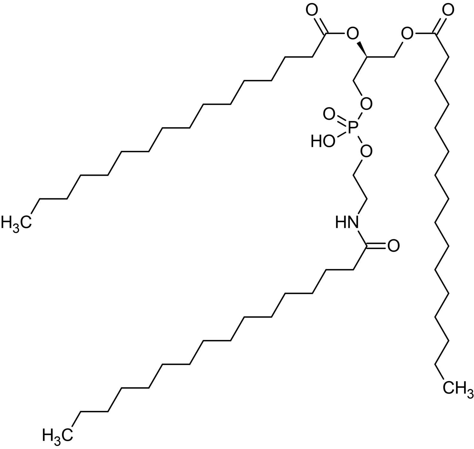 Chemical Structure - N-Palmitoyl phosphatidylethanolamine, Endogenous lipid anorectic hormone (ab145219)