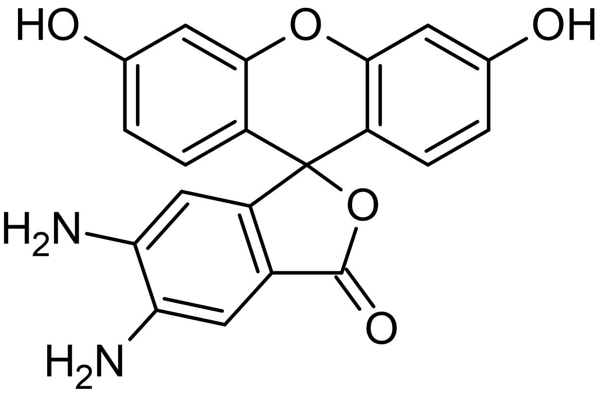 Chemical Structure - DAF-2, Fluorescent nitric oxide probe (ab145269)