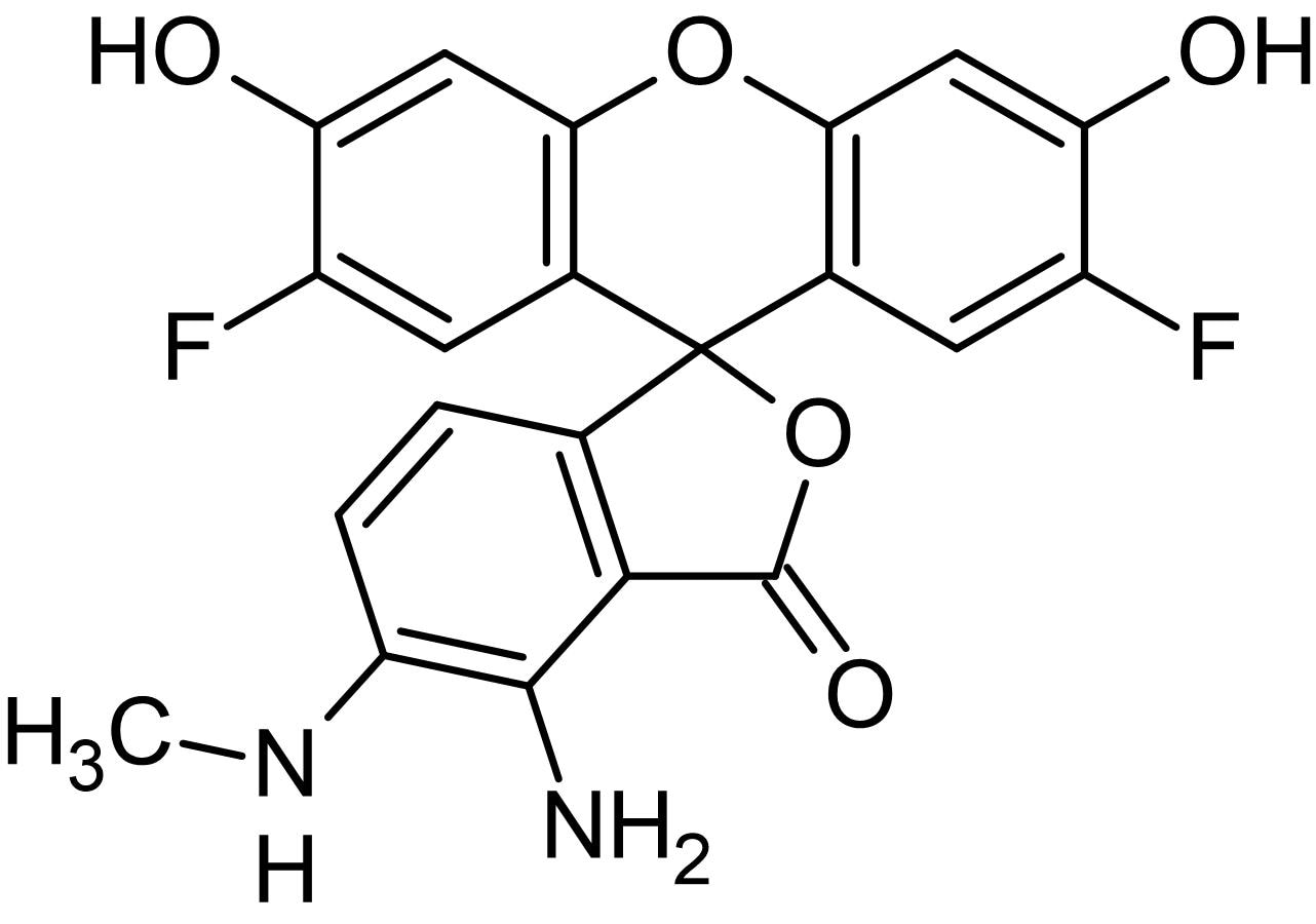 Chemical Structure - DAF-FM, Fluorescent probe for nitric oxide quantification (ab145297)