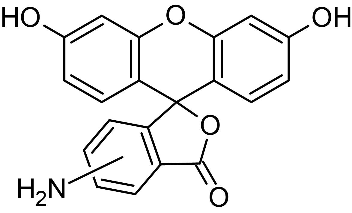 Chemical Structure - 5(6)-Aminofluorescein (mixture of isomers), Fluorescein derivative (ab145343)