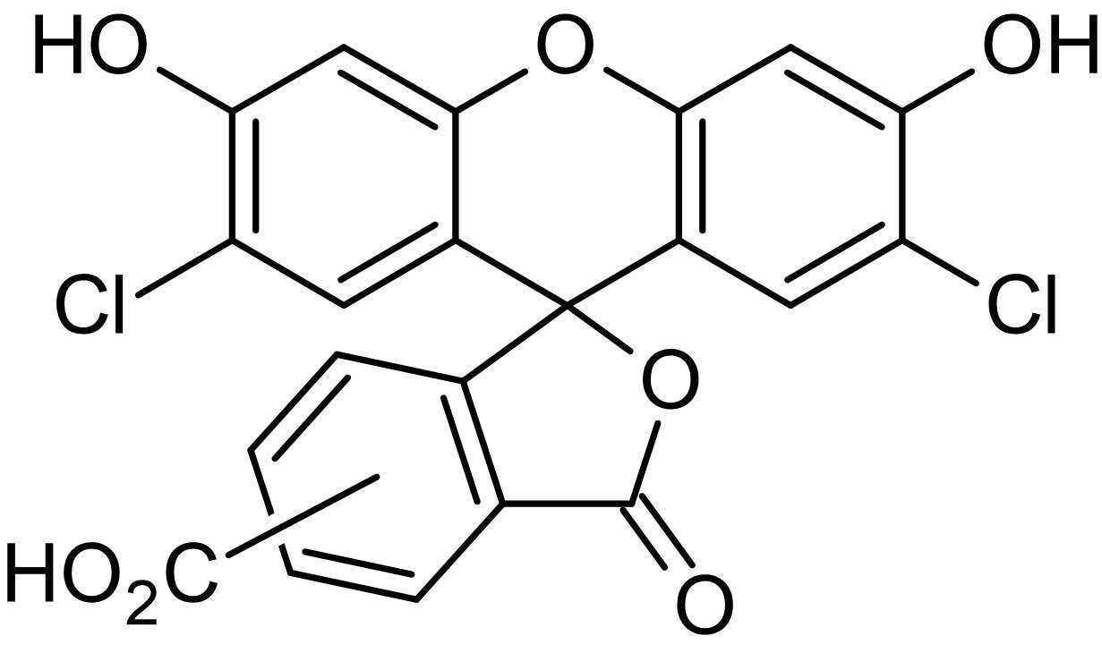 Chemical Structure - DCFA (5(6)-Carboxy-2',7'-dichlorofluorescein), Amine-reactive green fluorophore (ab145439)