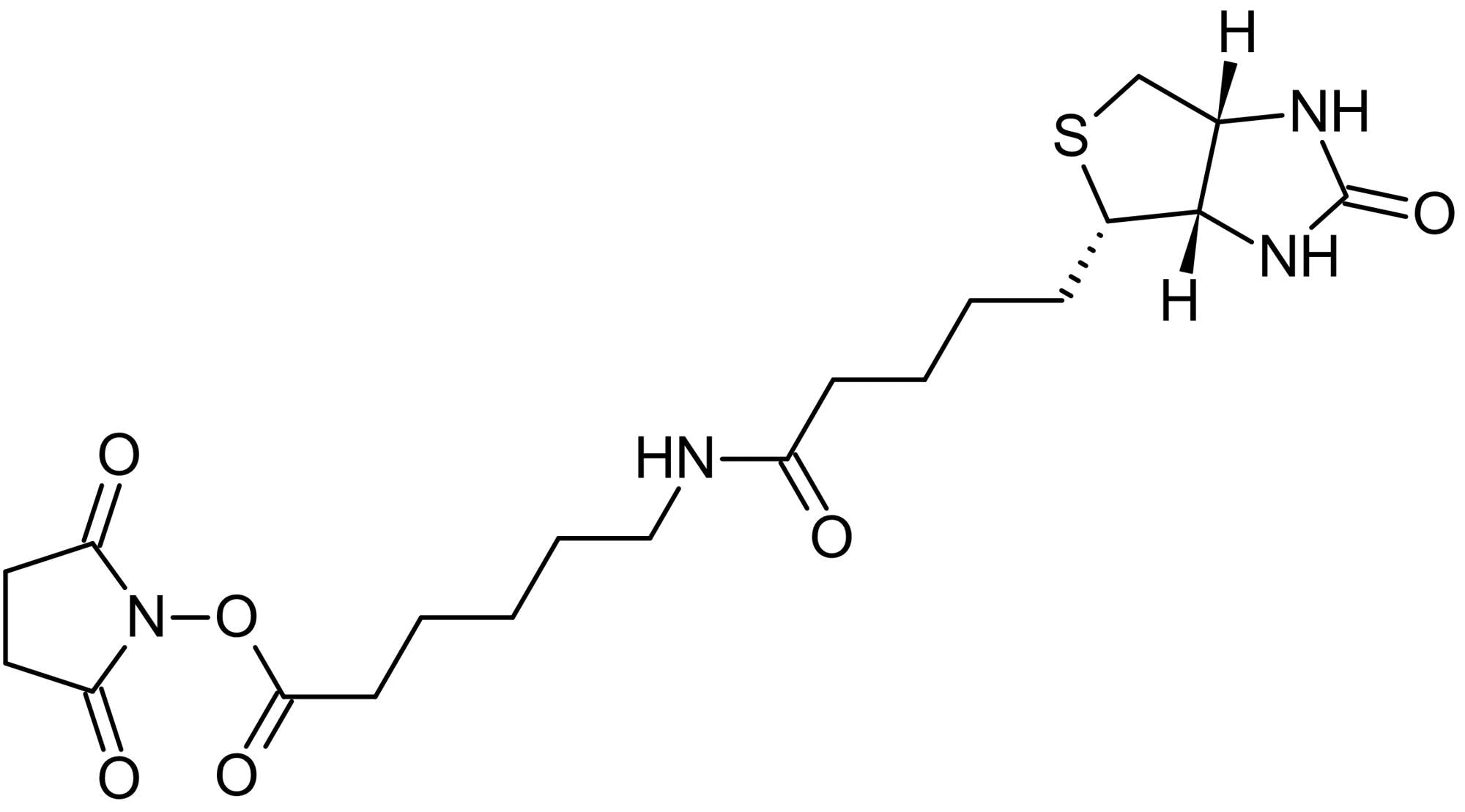 Chemical Structure - Biotin-LC-NHS (Succinimidyl 6-(biotinamido)hexanoate), Amine-reactive biotinylation agent (ab145617)
