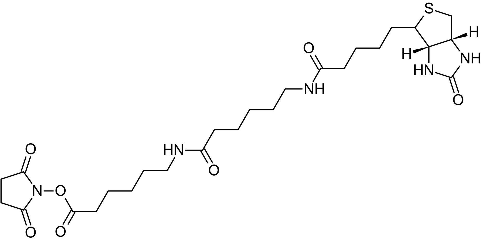 Chemical Structure - Biotin-LC-LC-NHS, Biotinylating agent (ab145618)