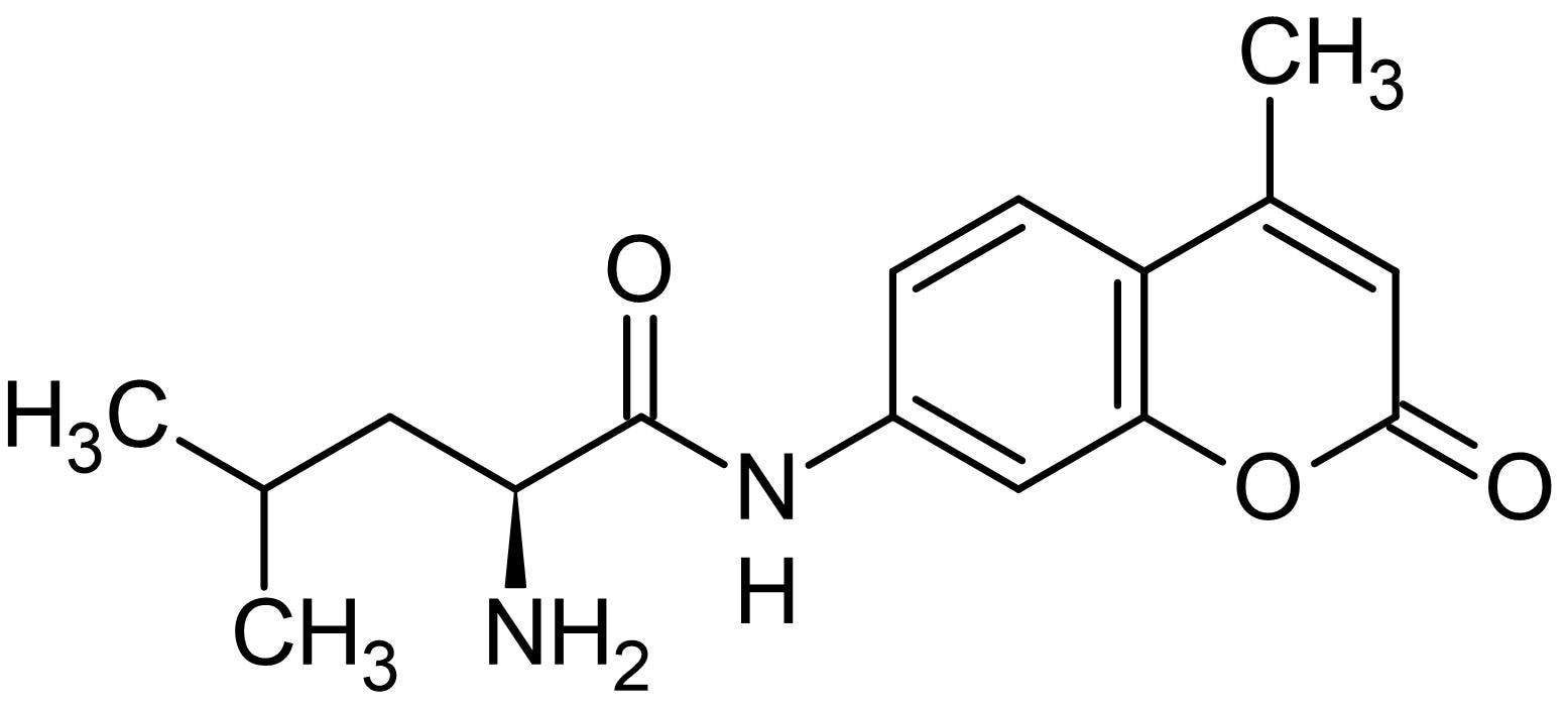Chemical Structure - L-Leucine 7-amido-4-methylcoumarin, Fluorogenic substrate (ab145941)