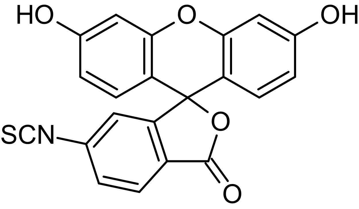 Chemical Structure - Fluorescein 6-isothiocyanate isomer 2, Fluorescent protein labeling reagent (ab146082)