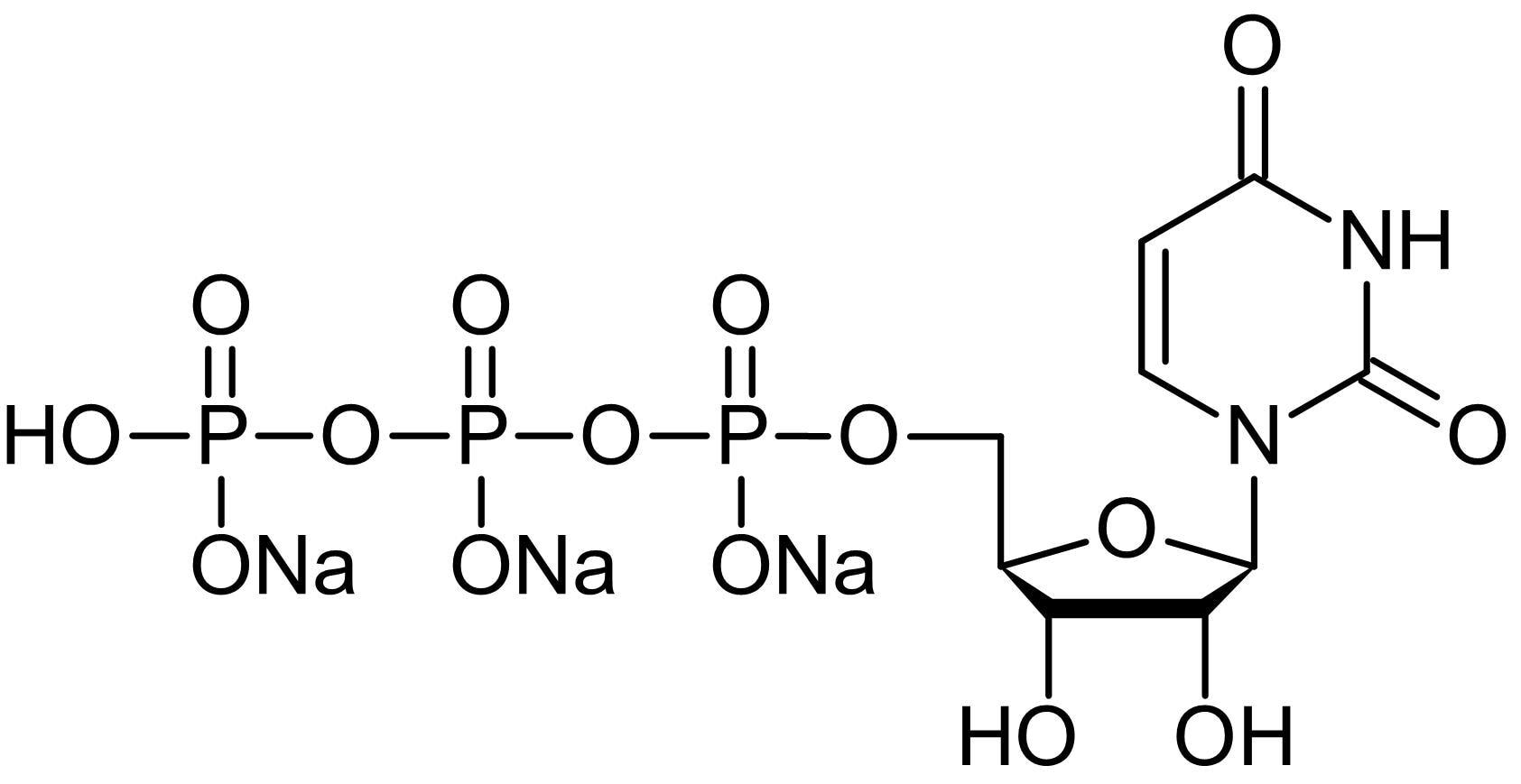 Chemical Structure - Uridine-5'-triphosphate [UTP] trisodium salt, P2Y receptor agonist (ab146222)