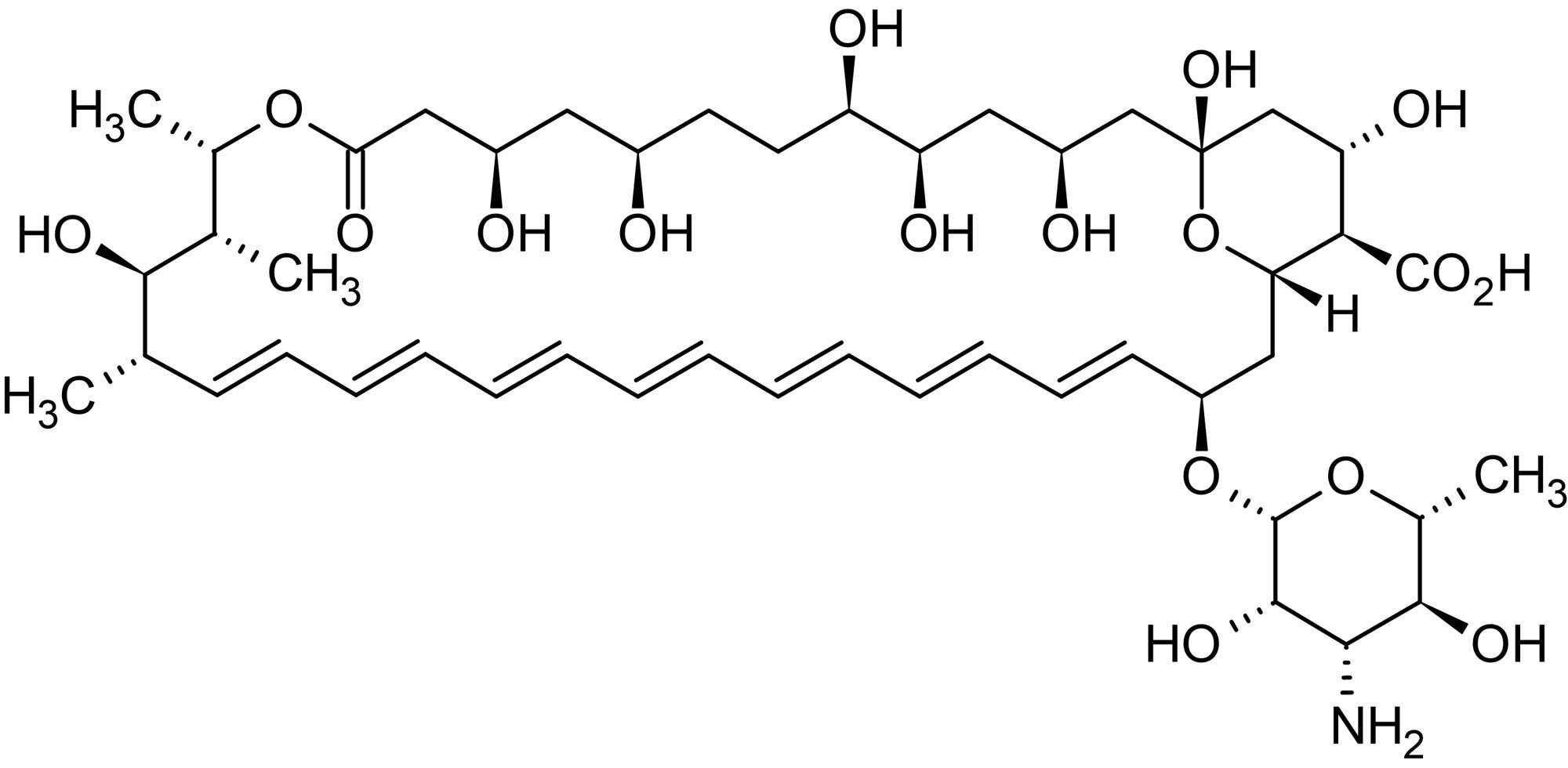 Chemical Structure - Amphotericin B (aqueous), polyene antifungal antibiotic (ab146566)