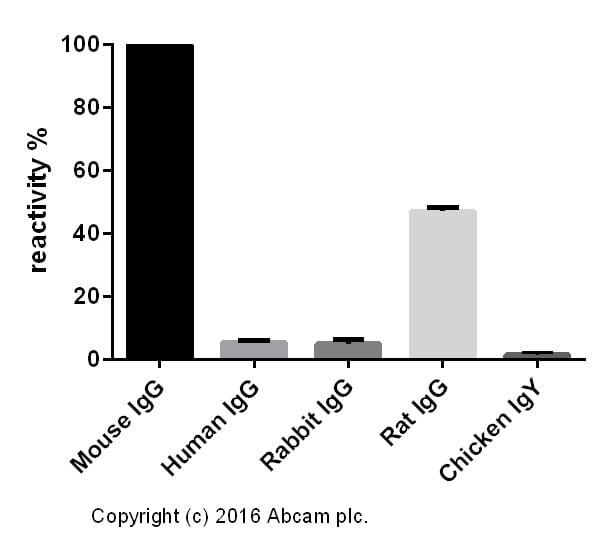 ELISA -山羊抗小鼠IgG H&L(Alexa Furor®488)预吸附(AB150 117)