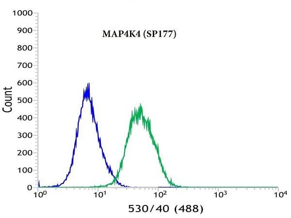 Flow Cytometry - Anti-MAP4K4/NIK antibody [SP177] (ab150300)