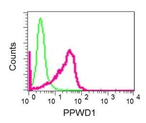Flow Cytometry - Anti-PPWD1 antibody [EPR7439] (ab150356)