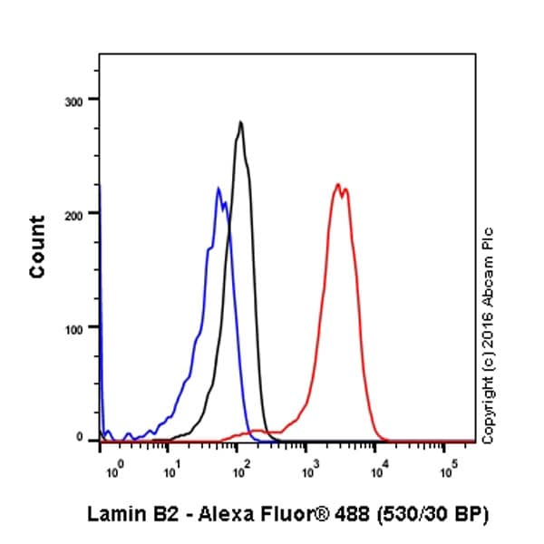 Flow Cytometry - Anti-Lamin B2 antibody [EPR9701(B)] (ab151735)