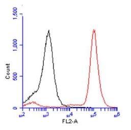 Flow Cytometry - Anti-BrdU antibody (ab152095)
