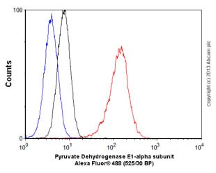 Flow Cytometry - Anti-Pyruvate Dehydrogenase E1-alpha subunit antibody [EPR11099] (ab155096)