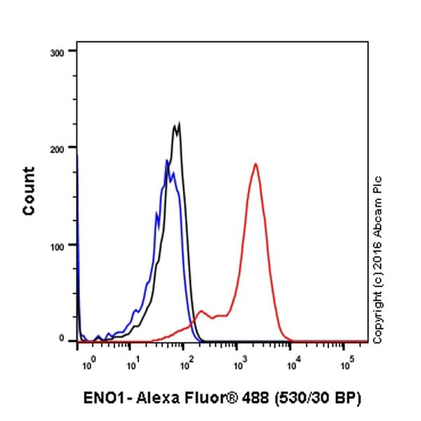 Flow Cytometry - Anti-ENO1 antibody [EPR10863(B)] (ab155102)