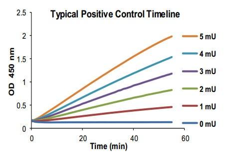ALDH activity in Positive Control