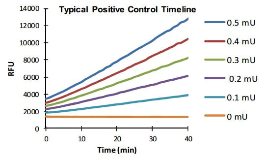 ALDH activity in Positive Control