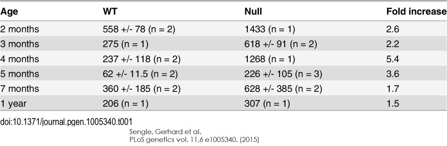 Functional Studies - Creatine Kinase Activity Assay Kit (Colorimetric) (ab155901)