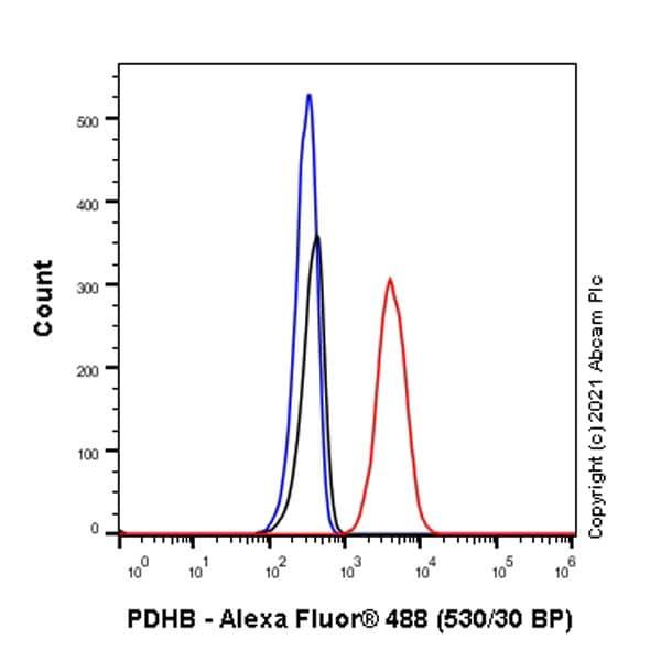 Flow Cytometry - Anti-PDHB antibody [EPR11097(B)] (ab155996)