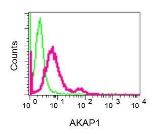 Flow Cytometry - Anti-AKAP1 antibody [EPR10518] (ab156004)