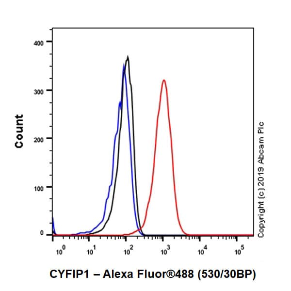 Flow Cytometry - Anti-CYFIP1 antibody [EPR10782] (ab156016)