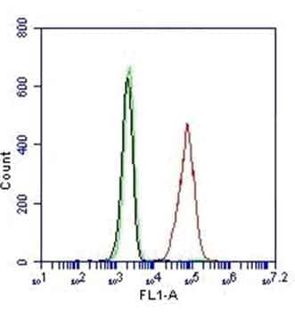 Flow Cytometry - Anti-p53 antibody [9D3DE3] (Alexa Fluor® 488) (ab156030)