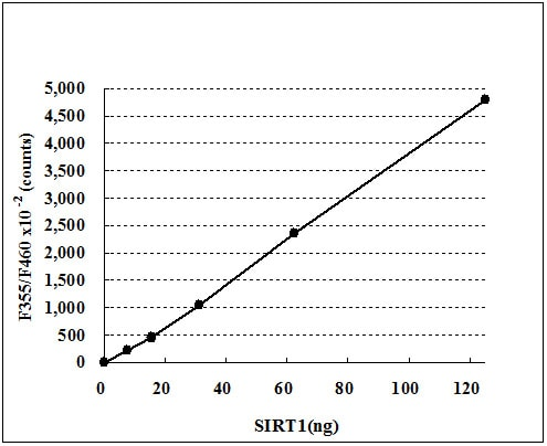 ab156065 - SIRT1 Activity Assay Kit (Fluorometric)