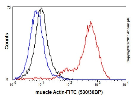Flow Cytometry - Anti-muscle Actin antibody [EPR8484] (ab156302)