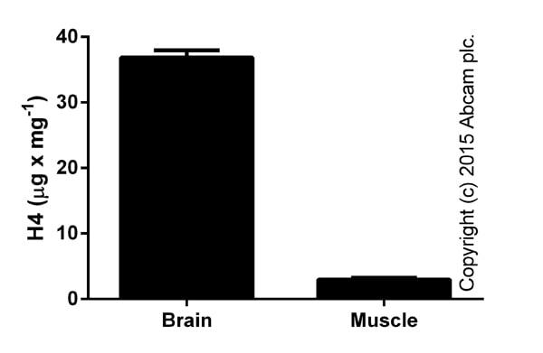 Functional Assay: ab156909 Histone H4 Total Quantification Kit (Colorimetric)