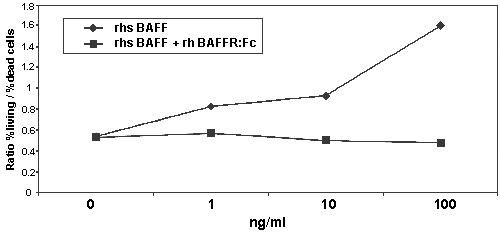 Functional Studies - Recombinant human BAFF-R protein (ab157066)