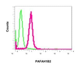 Flow Cytometry - Anti-PAFAH1B2 antibody [EPR11250] (ab157479)