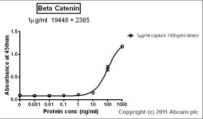 Sandwich ELISA - Anti-beta Catenin antibody (ab16051)