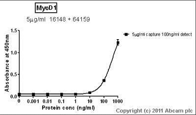 Sandwich ELISA - Anti-MyoD1 antibody [5.2F] (ab16148)
